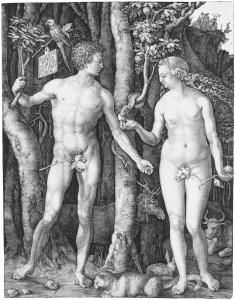 Adam and Eve (B. 1; M., HOLL. 1) *engraving  *24.6 x 19.2 cm *1504